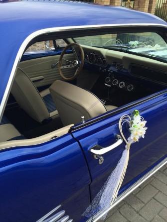 Mustang4 Radzyń Podlaski