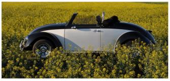 Garbus Cabrio do ślubu 1959r Stylowy, retro, jedyny taki w Polsce ! Opole
