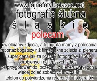 fotografia ślubna Katowice cennik