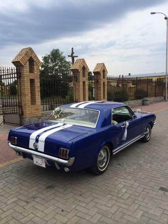 Mustang3 Radzyń Podlaski