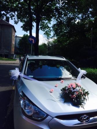 kwiaciarnia Stokrotka sosnowiec