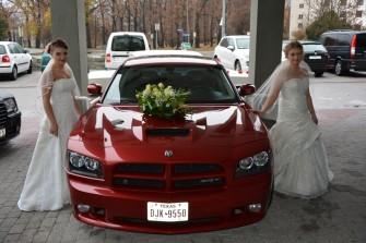 Auto Do Ślubu US Gogolin