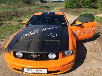 Mustang Piekary Śląskie
