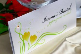 Zaproszenie ślubne - Wiosna Katowice