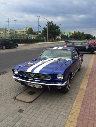 Mustang1 Radzyń Podlaski