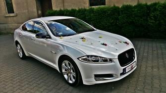 Luksusowy biały Jaguar XF - Wielkopolska-TANIO!!! Poznań