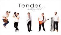 Zespół Tender Band Dębica
