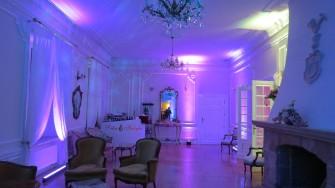 Dekoracje �lubne,weselne, dekoracje LED Gr�jec