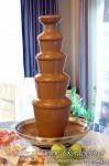 Fontanna czekoladowa Rzesz�w, wynajem fontanny czekoladowej Rzesz�w �a�cut