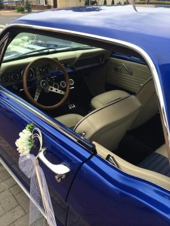 Mustang5 Radzyń Podlaski
