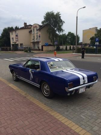 Mustang2 Radzyń Podlaski