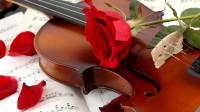 Artystyczne skrzypce na ślubie Kraków
