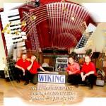 Zespół muzyczny-Wiking Kraków