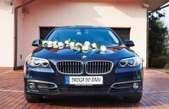 BMW F10 520 Radom