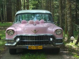 Wyjątkowe auto do ślubu Ryn
