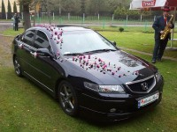 Honda Accord Type S /Tychy/�l�sk  Tychy