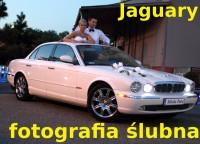 Przepiękne Jaguary do ślubu Sosnowiec