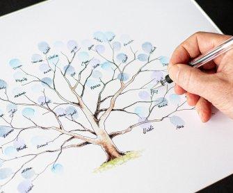 Drzewko na odciski palców Rzeszów