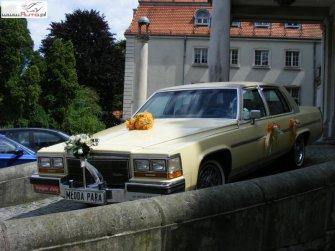 Cadillac Fleetwood - wyjątkowe auto do ślubu Bytom