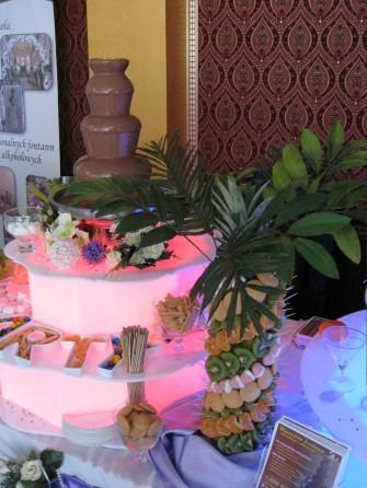 palma owocowa 60cm Dębica