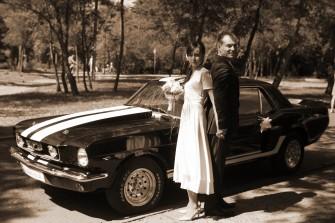 mustang 1966 mszczonów