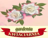 kwiaciarnia P�ock