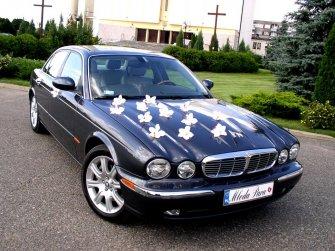 Jaguar XJ8 Biała Podlaska