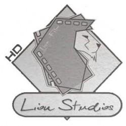 LionStudios HD Rzeszów