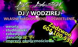 DJ / WODZIREJ DAvSON Luboń