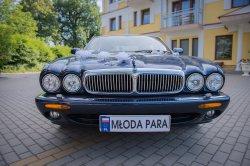 Jaguary na ślub Rzeszów