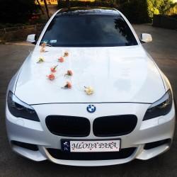 Białe BMW serii 5 M Pakiet Brodnica