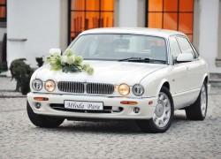Perłowy Jaguar do wynajęcia Kraków