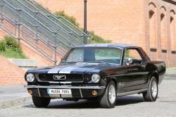 Mustang 1966 Łódź