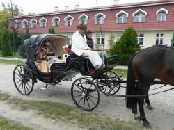 Bryczka na ślub - Stanisław Rudkiewicz Wrocław