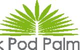 Park Pod Palmami Góra Kalwaria