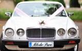 Luksusowy Jaguar Bytom