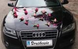 Pi�kne Audi a5 - dla Vip�w Krak�w 2015 krak�w