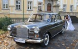 Mercedes do �lubu Gryf�w �l�ski