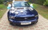 Auto do �lubu: MUSTANG, BMW, MERC-SLK Lublin