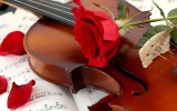 Artystyczne skrzypce na �lubie Krak�w
