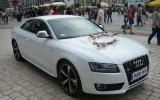 Pi�kne Audi A5 Krak�w i okolice Krak�w