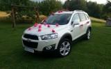Piękny samochód do ślubu CHEVROLET CAPTIVA Pcim