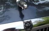 Królewski Jaguar Dla Wymagających Wrocław