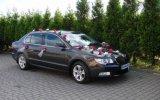 Auto do Ślubu Superb II Wysokie Mazowieckie
