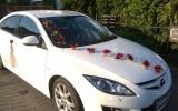 Bia�a Mazda 6  Toru�