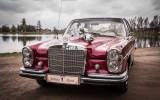 AUTO DO ŚLUBU-Mercedes W108 1966r. ŁÓDZKIE,ŚLĄSKIE,OPOLSKIE Pajęczno