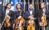 Kwartet Opera - kwartet smyczkowy Gdańsk