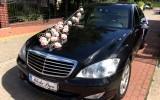 Wynajem samochodu do ślubu Mercedes S-klasa  Borówiec