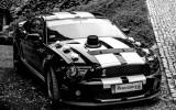 Mustang Shelby Gt500 Look SAM PROWADZISZ Krak�w
