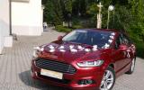 Samochód do ślubu, piękny, komfortowy, elegancki, nowy Ford Mondeo Żory